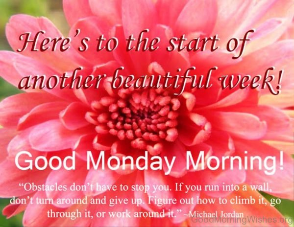 Heres To The Start Of Another Beautiful Week