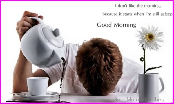 I Dont Like The Morning Because It Starts When Im Still Asleep