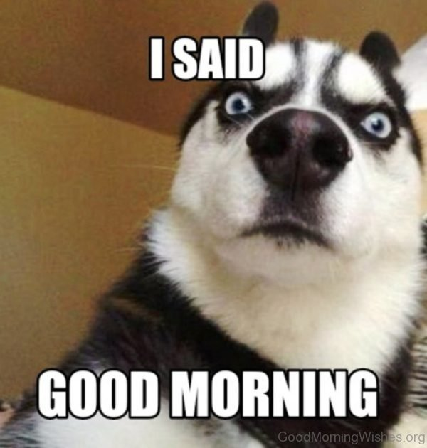I Said Good Morning