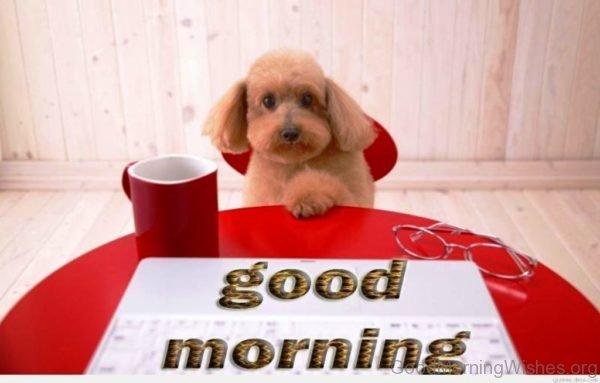 Image Of Good Morning 1