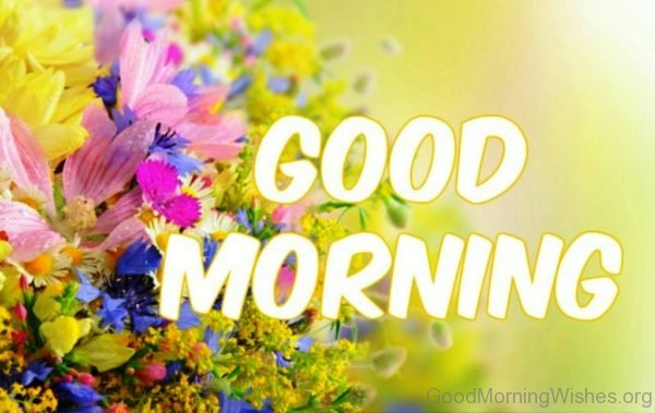 Image Of Good Morning Flowers