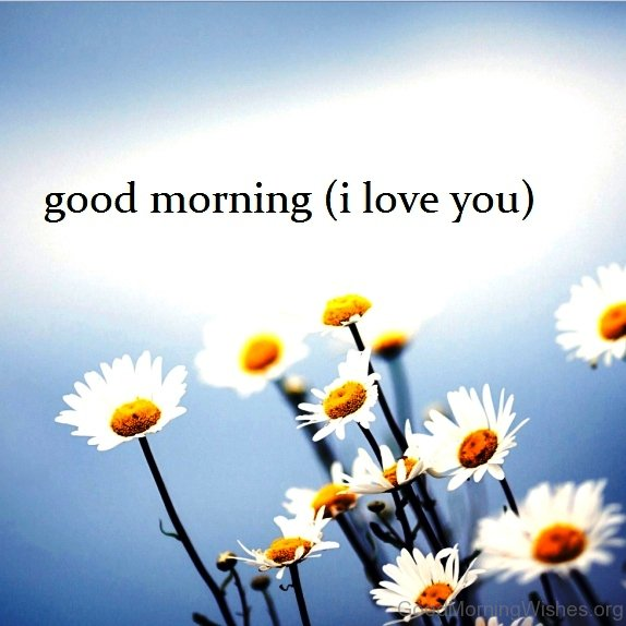 Wallpaper Good Morning I Love You : 94+ Good Morning I Love You Flowers - Good Morning Heart And Flowers, I Love You HD Wallpaper ...