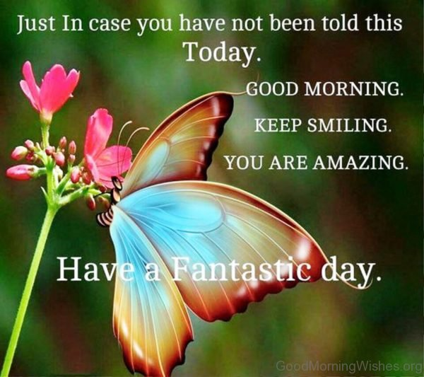 Just In Case You Have Not Been Told This Today