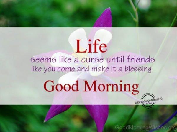 Life seems like curseGood Morning