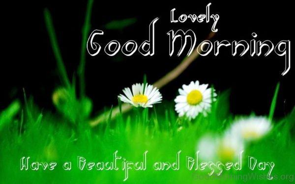 Lovely Good Morning 3