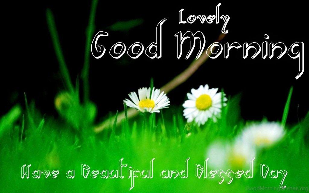 55 Fresh Good Morning Wishes