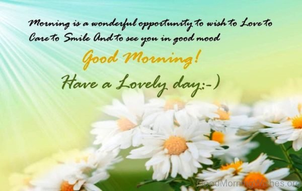 Morning Is A Wonderful Opportunity To Wish