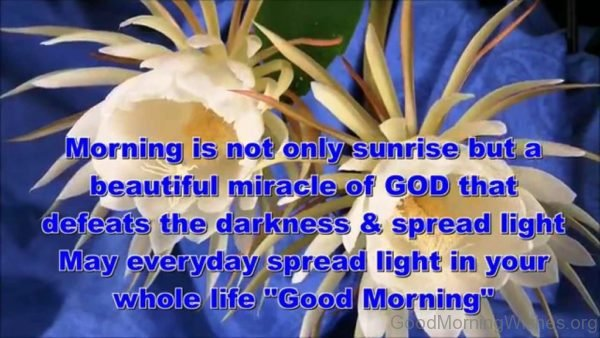 Morning Is Not Only Sunrise But A Beautiful Miracle Of God
