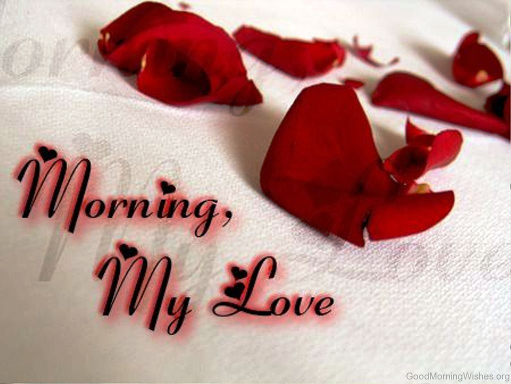 Good Morning Love Love : Good morning wishes my love
