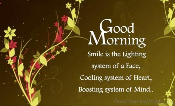 Smile Is lighting System Of A Face