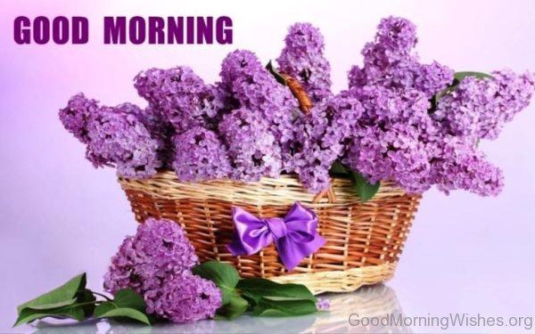Stunning Photo Of Good Morning 1