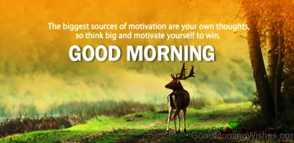 The Biggest Sources Of Motivation Are Own Thoughts