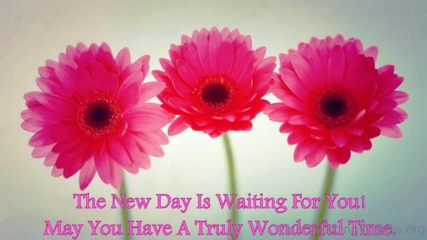 The New Day Is Waitting For You