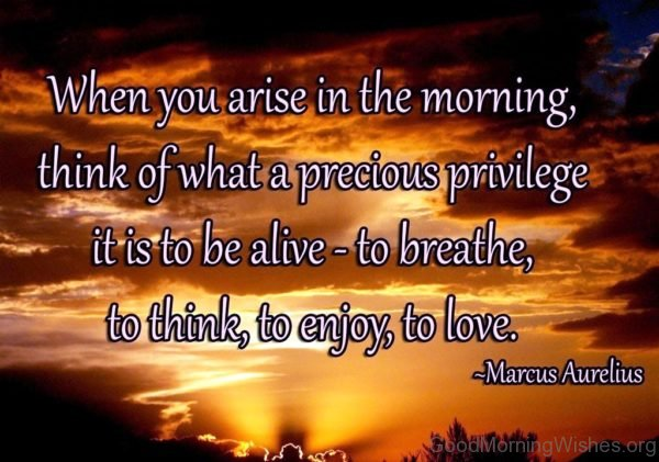 When You Arise In The Morning Quote