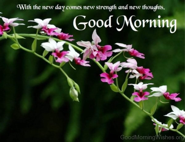 With The New Day Comes New Strength And New Thougts