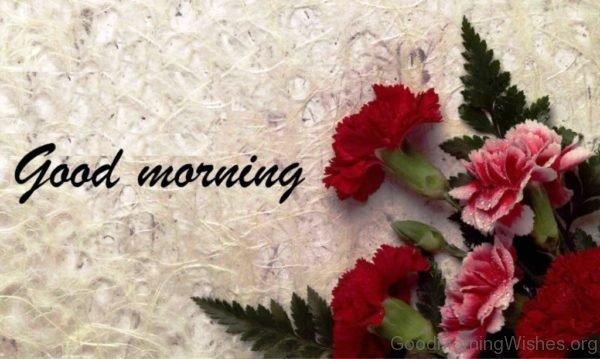 Wonderful Pic Of Good Morning Pic