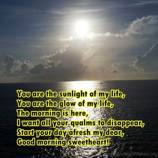 You Are The Sunlight Of My Life 1