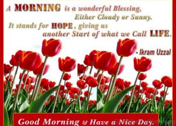 A Morning Is A Wonderful Blessing Either Cloudy Or Sunny