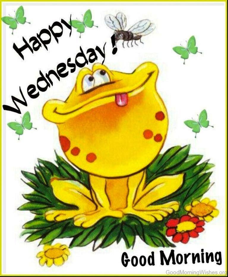 ... Happy Wednesday. Amazing Good Morning Photo