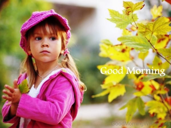 Beautiful Good Morning Picture