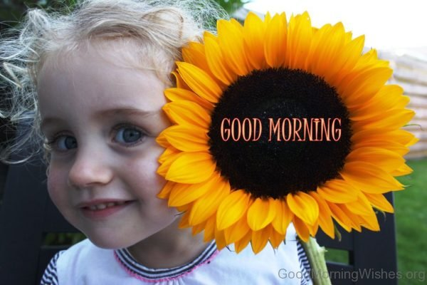 Cute Pic Of Good Morning Sunflower