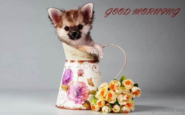 Cute Puppy Good Morning Pic
