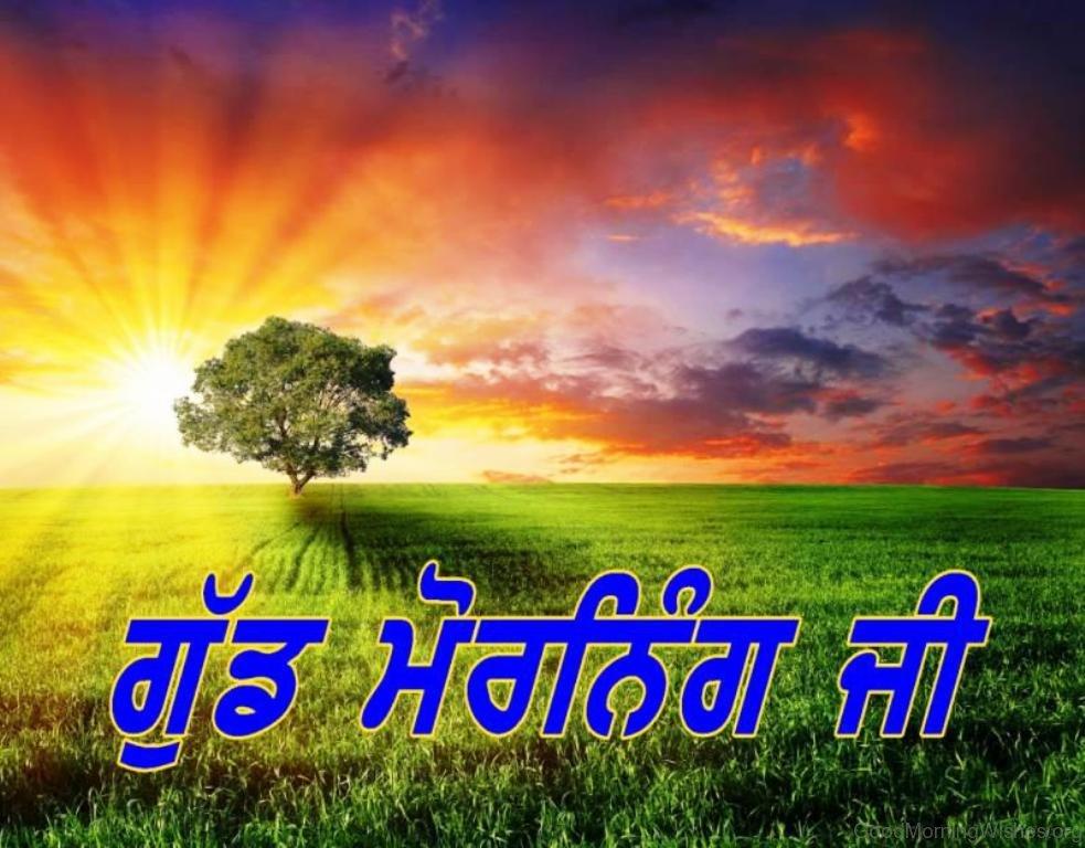 23 Punjabi Good Morning Wishes