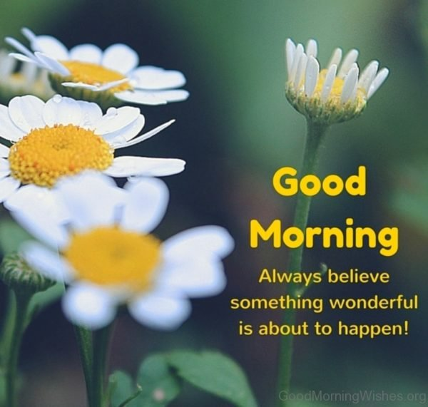 Good Morning Always Believe Something Wonderful Is About To Happen