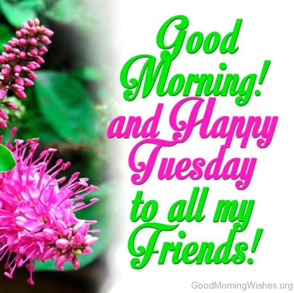 Good Morning And Happy Tuesday To All My Friends