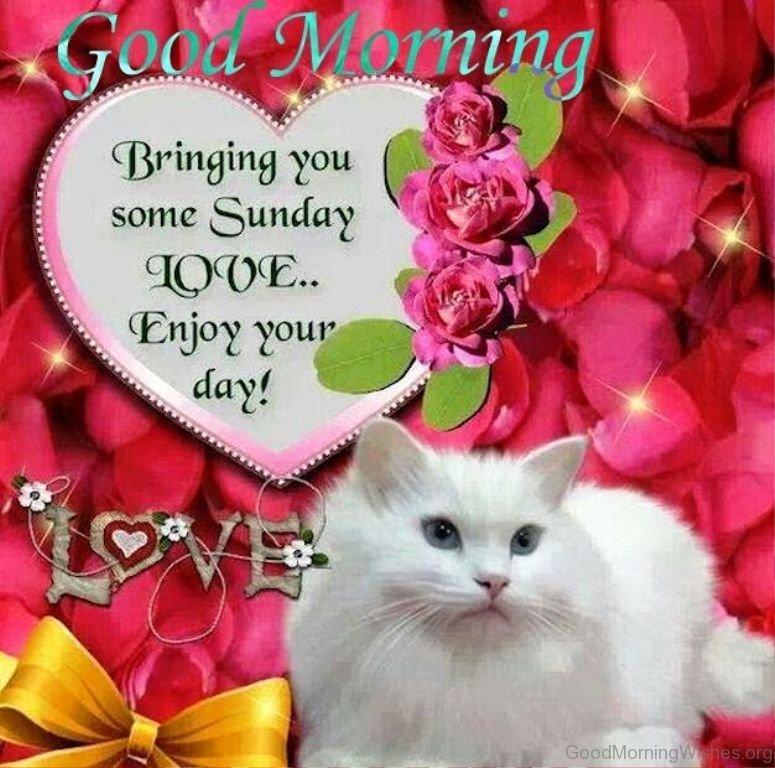 Good Morning Sunday Messages : Sunday good morning wishes