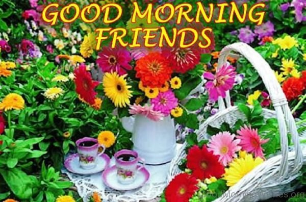 Good Morning Friends 6