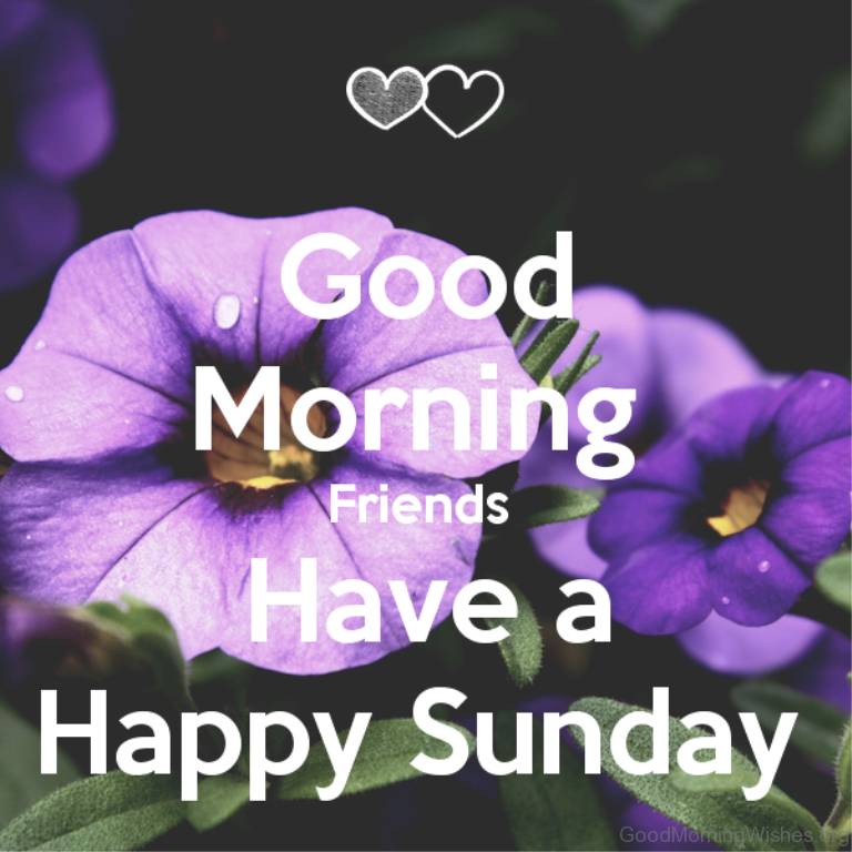 44 sunday good morning wishes good morning friends have a happy sunday m4hsunfo