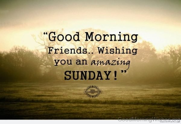 Good Morning Friends Wishing You An Amazing Sunday