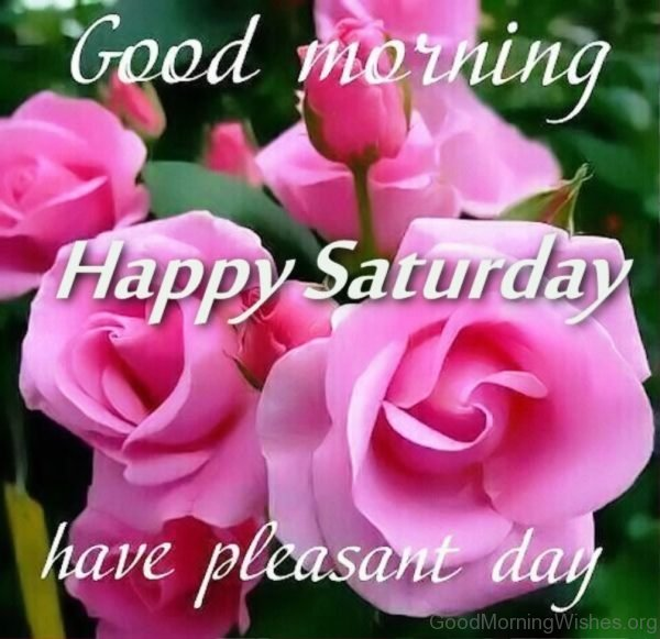 Good Morning Happy Saturday Have Pleasant Day