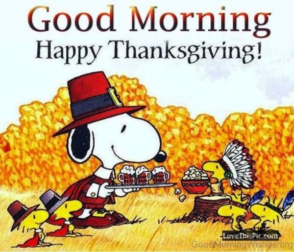 Good Morning Happy Thanksgiving