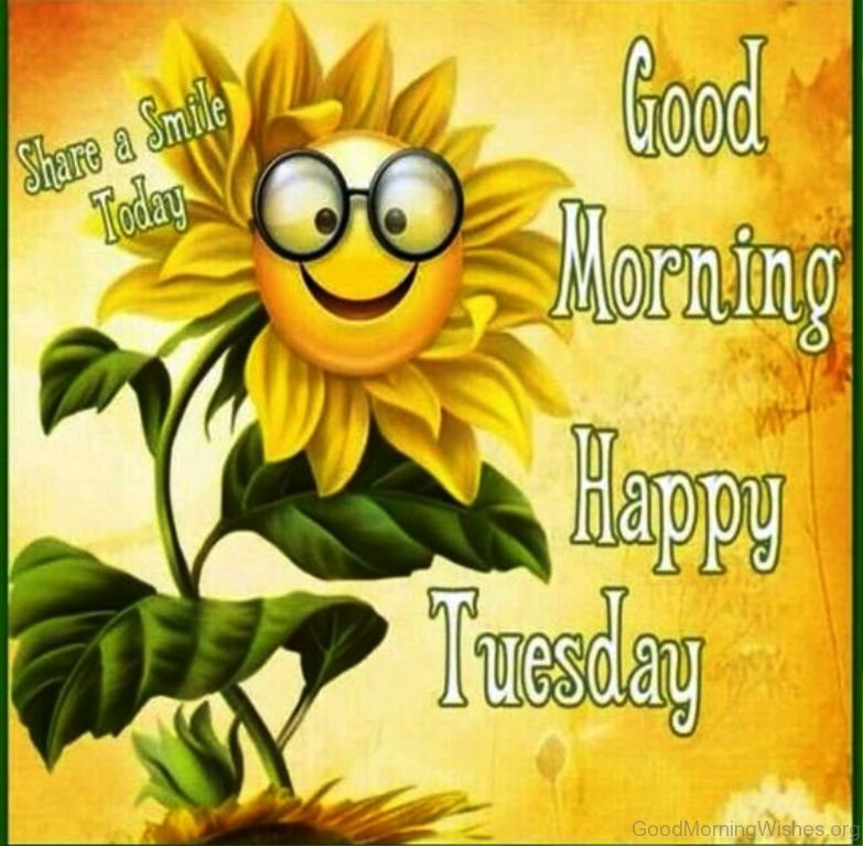 Good Morning Tuesday Messages : Sunflower good morning wishes
