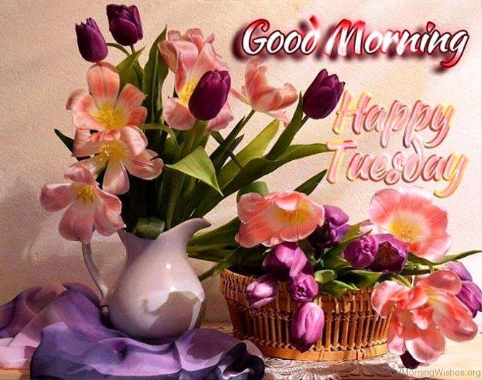 Superior Good Morning Happy Tuesday
