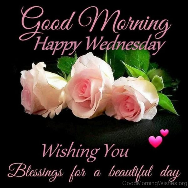 Good Morning Happy Wednesday Wishing You Blessing For A Beautiful Day