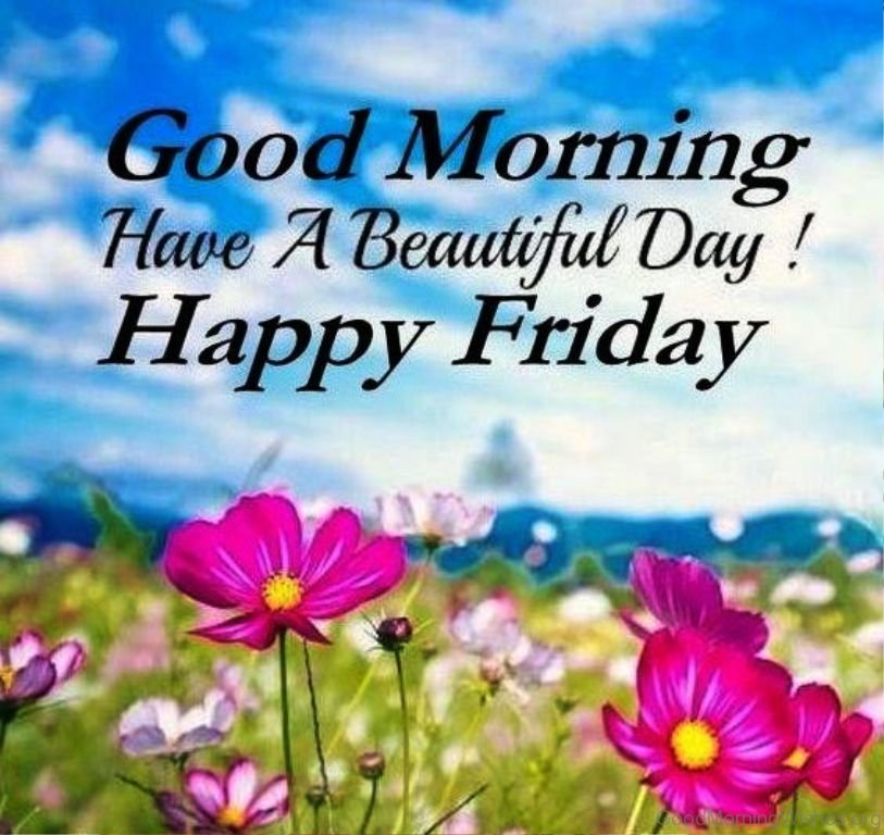 Good Morning Beautiful Have A Good Day : Good morning beautiful friday