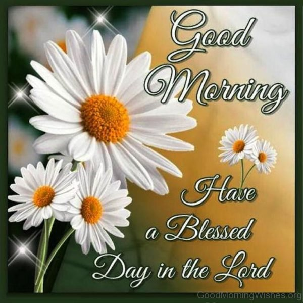 Good Morning Have A Blessed Day In The Lord