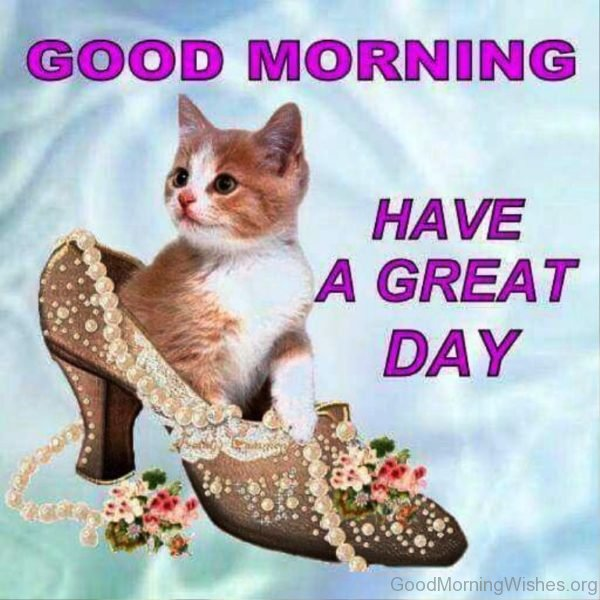 Good Morning Everyone Have A Good Day : Cute kitten pics with sayings impremedia
