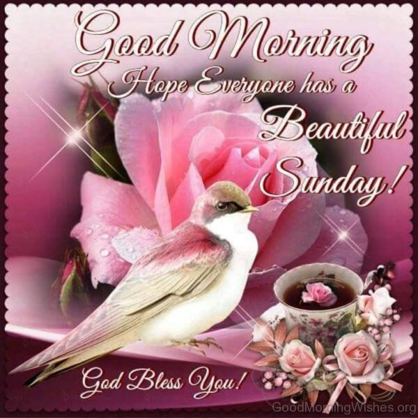 Good Morning Hope Everyone Has A Beautiful Sunday