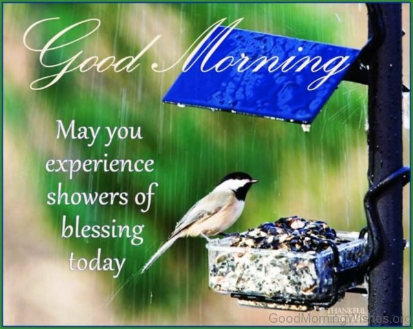 Good Morning May You Experience Showers Of Blessing Today