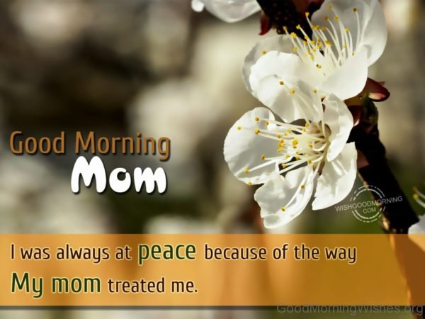 Good Morning Mom I Was Always At Peace