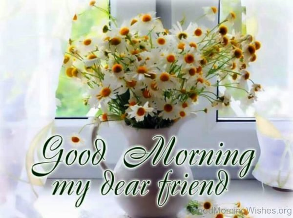 Good Morning My Dear Friend 1