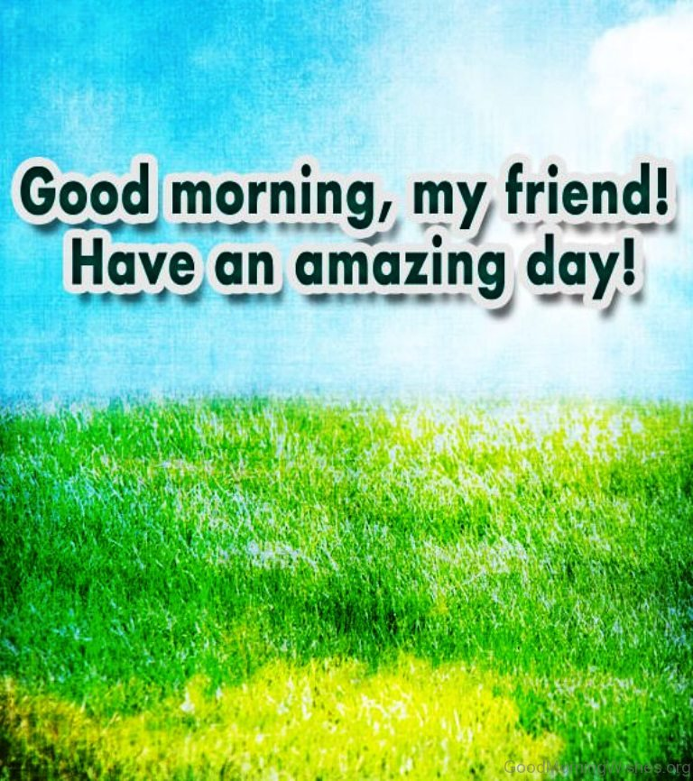 Good Morning Friends Have A Nice Day Images : Good morning all my friends have a nice day imgkid