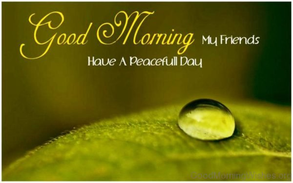 Good Morning My Friends Have A Peacefull Day