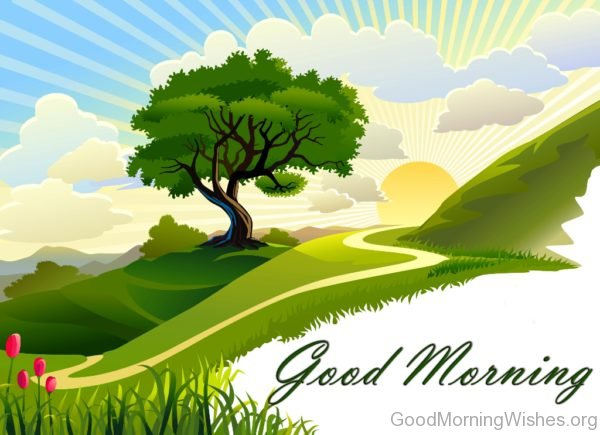Good Morning Nature HD Wallpaper