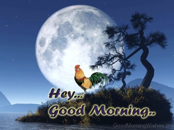 Good Morning Rooster Image