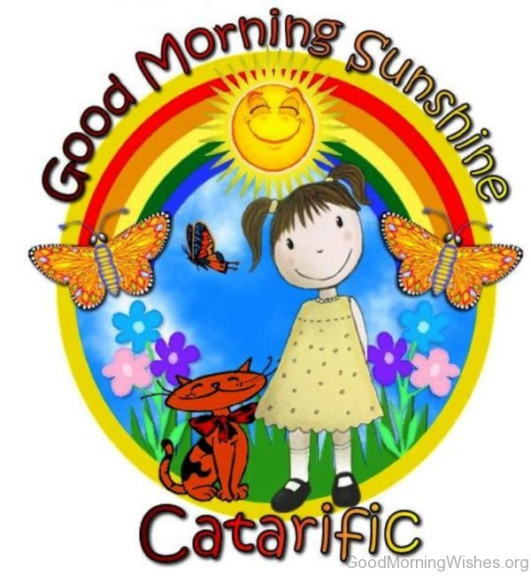 Good Morning Sunshine Catarific